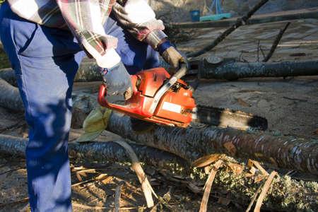 houthakker met kettingzaag in de hand om bomen te snijden