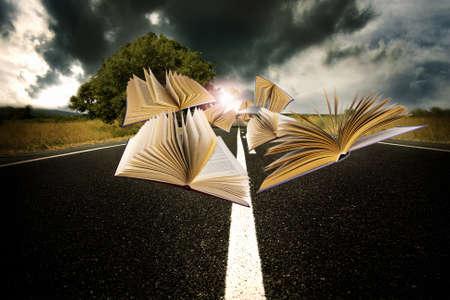 boeken vliegen over het landschap van de weg