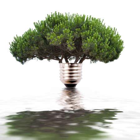 renewable energy concept Standard-Bild