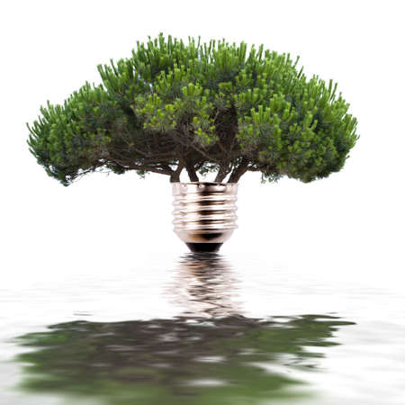 arbre: renewable energy concept Stock Photo