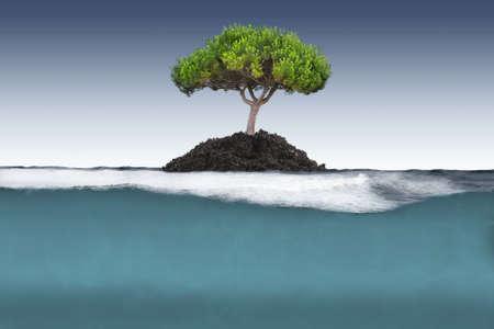 ocean floor: tree island in the sea