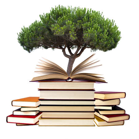 books with tree isolated on white background photo