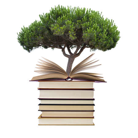 books with tree isolated on white background