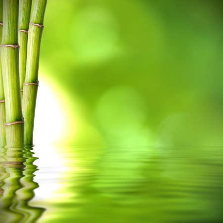 achtergrond van natuurlijke spa met planten en reflectie in het water