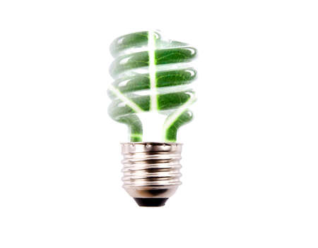 natural background bulb isolated on white background photo