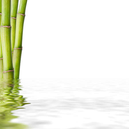 zen water: bamboo trunks, fund spa decoration