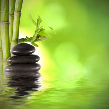 troncos de bambú, decoración de fondo spa