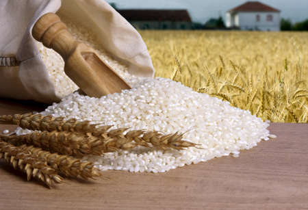natuurlijke bruine rijst Stockfoto