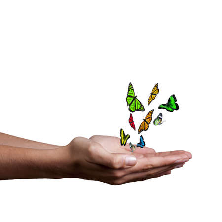 land development: hand with butterflies and white background Stock Photo