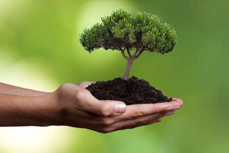 environmental pollution: ecology concept