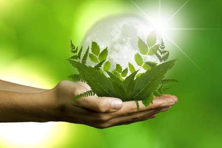 ecology concept photo