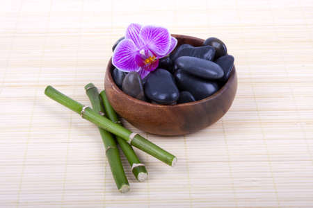 spa black stones photo