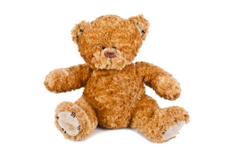 loving teddy bear isolated on white background photo