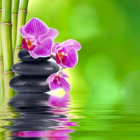 Natuurlijke bloemen spa concept Stockfoto - 24255398