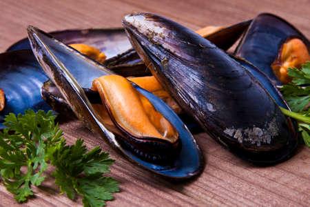 mussels Standard-Bild