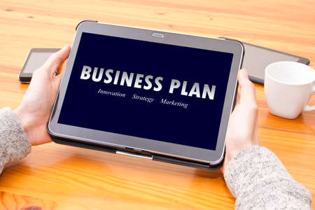 viability: Internet consulting business plan