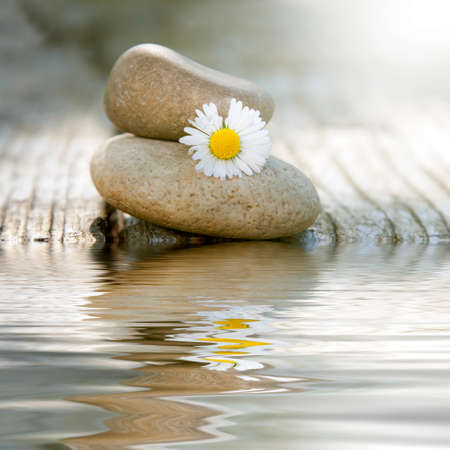 beauty in nature: stones in balance with daisy and reflection in water Stock Photo