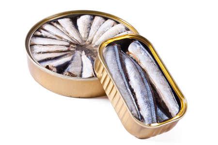 sardinas: Sardinas aisladas sobre fondo blanco Foto de archivo