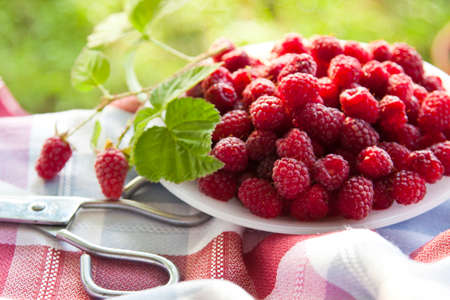 freshly cut natural raspberries