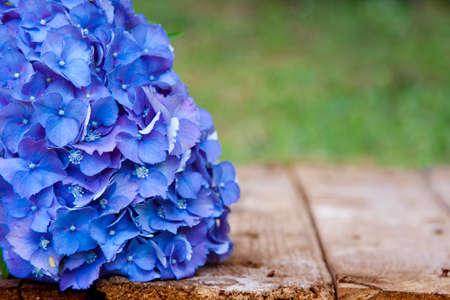 hydrangea flower: blue hydrangea flower on wood Stock Photo