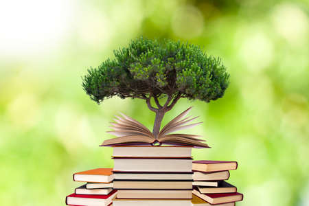 tree growing in open-book with more stacked books