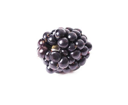 blackberry black natural white background Reklamní fotografie