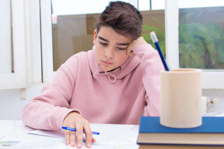 young student at the home or school table studying