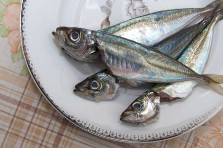 fresh sardines on the plate Stock Photo