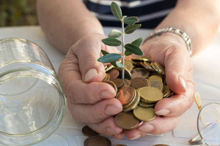 grandfather's hands with the savings and the plant growing Stock Photo - 115674338