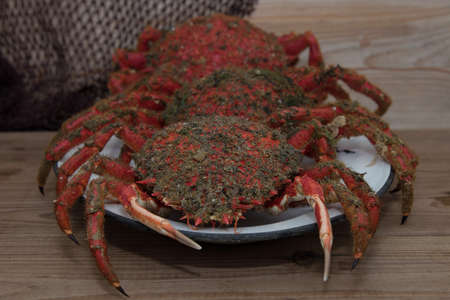 galician crab in tray, seafood
