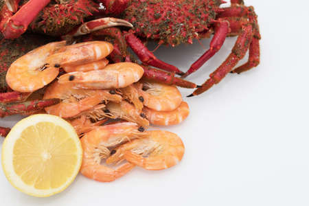 fresh and wild galician seafood Imagens