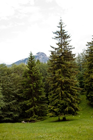 Des montagnes de la province de Bergame, Italie
