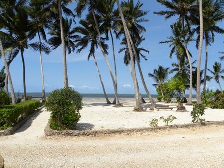 zanzibar: Zanzibar eiland Tanzania met zijn witte zandstranden Stockfoto