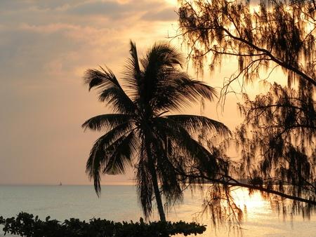 Guarda un tramonto spettacolare sul mare di Zanzibar, Tanzania