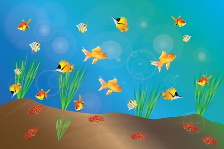 aquarium with fish and crabs Vector