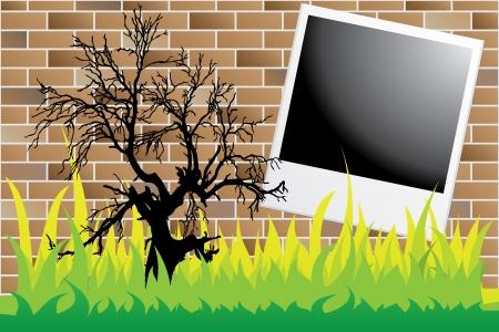 dead tree on brick wall with polaroid Vector