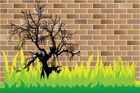 dead tree on brick wall Vector