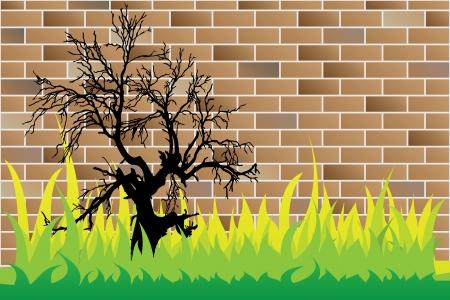 dead tree on brick wall Vector