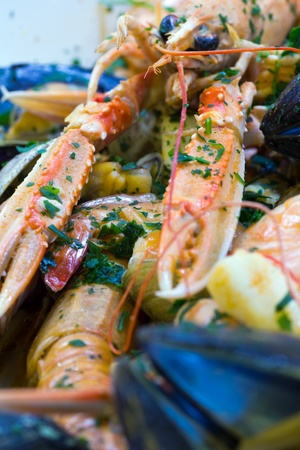 shellfish sauce for spaghetti photo