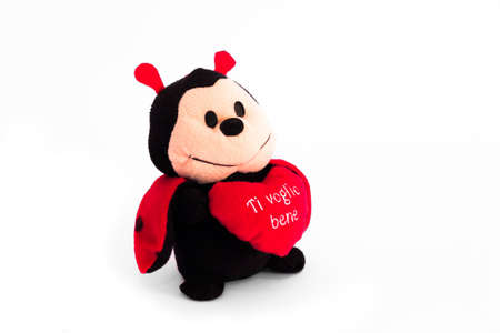 s horn: ladybug and his message of love in a heart Stock Photo