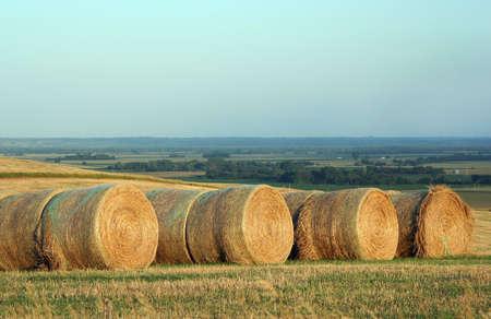 round bales; Schuyler, Nebraska photo