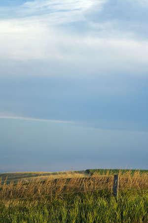 Farmland, Fence, and Sky