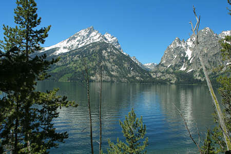 teton: Lago Jenny, Grande Parco Nazionale Di Teton, Wyoming