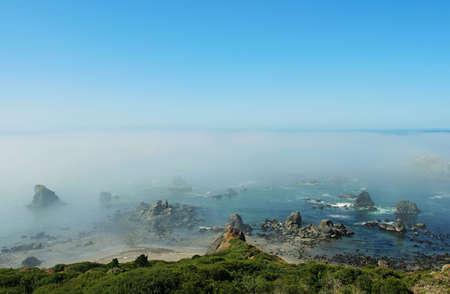 coastal fog, Brookings, Oregon 版權商用圖片
