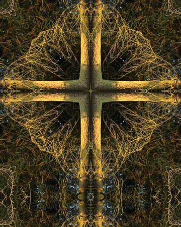 Tree in morning light, Kaleidoscope Cross Reklamní fotografie