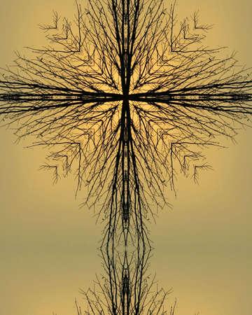 kaleidoscope cross4:  tree silhouette, Nebraska morning Stock Photo - 622696