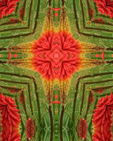 kaleidoscope cross:  red flower