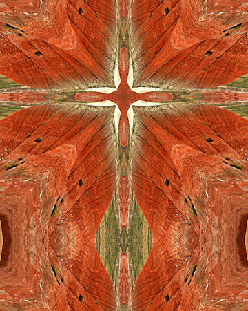 kaleidoscope cross:  Painted Desert, Arizona