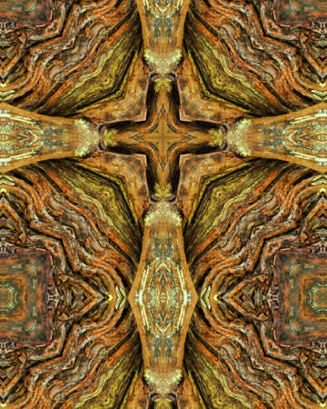 kaleidoscope cross:  redwood tree trunk 版權商用圖片