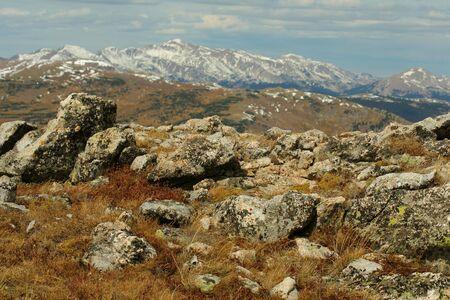 alpine rocks2, Mummy Range, Colorado Stok Fotoğraf